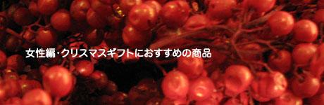 2012_12_25f.jpg